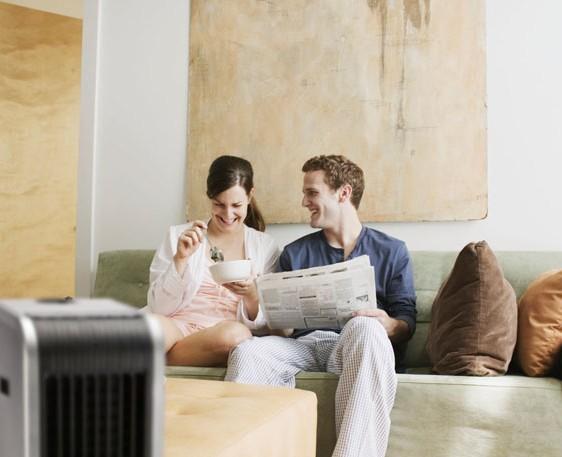 Purifica el ambiente de tu hogar